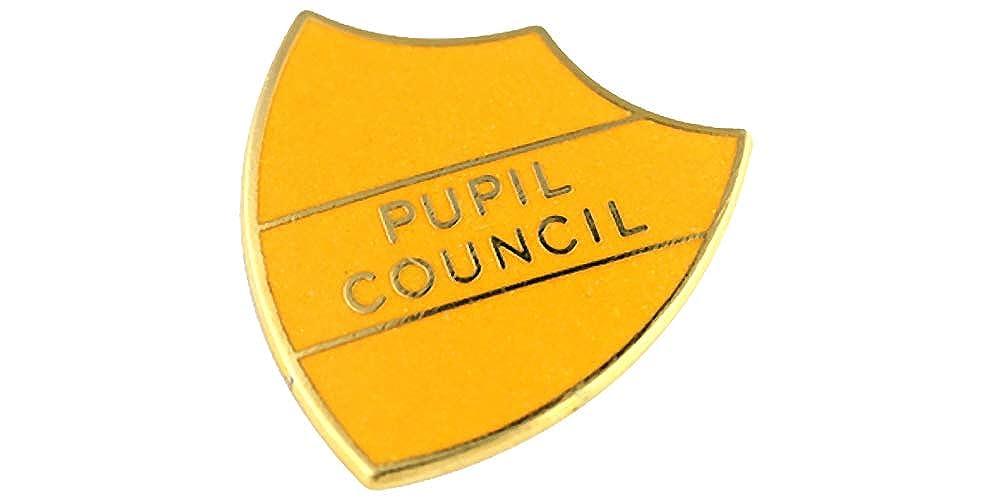 Capricornone Pupil Council School Shield Badge Handmade Vitreous Enamel