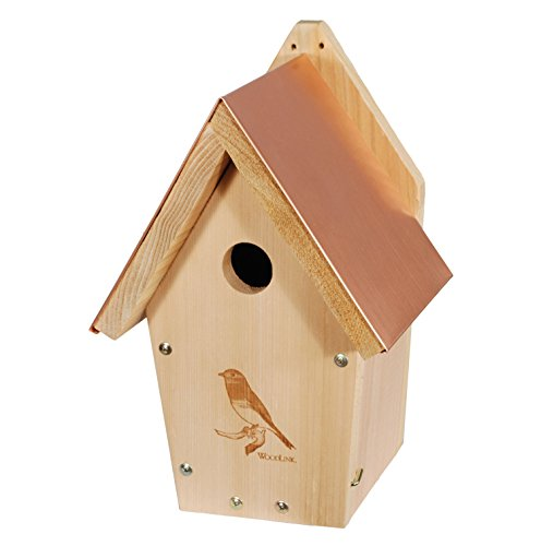WoodLink BB303 Coppertop Bluebird House Review