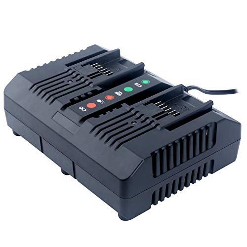 Lasica WA3875 20V Lithium Charger Replacement for WORX WA3875 20 Volt Li-ion Dual Port Charger, Compatible With Worx 18V/20V Li-Ion Battery WA3525 WA3578 WA3520 WA3575 WA3512 WA3512.1 WA3522 WA3544 ()