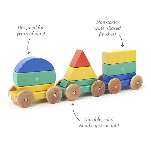 9 Piece Tegu Magnetic Shape Train Building Block Set, Big Top