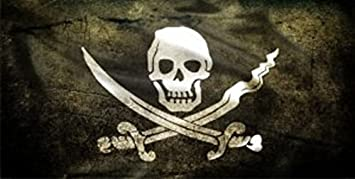 Skull and Crossbones Photo License Plate