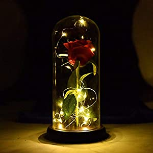 Novobey Beauty and The Beast Enchanted Rose, Silk Red Rose with LED Light in a Glass Dome on Wood Base for Home Decor, Holiday, Party, Wedding, Anniversary 8