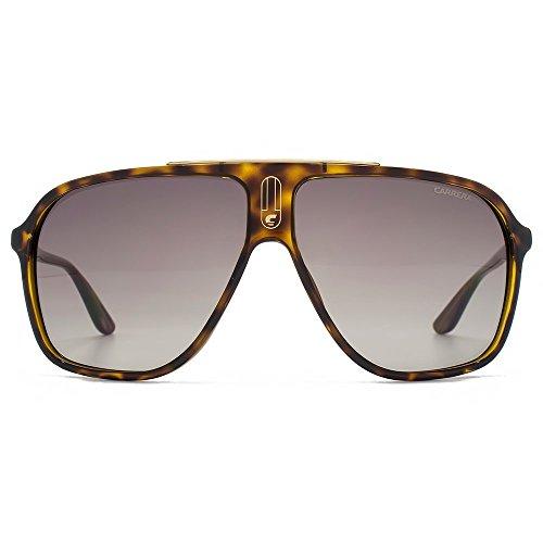 Carrera 6016S DWJHA Tortoise 6016S Aviator Sunglasses Lens Category - Latest Carrera Sunglasses