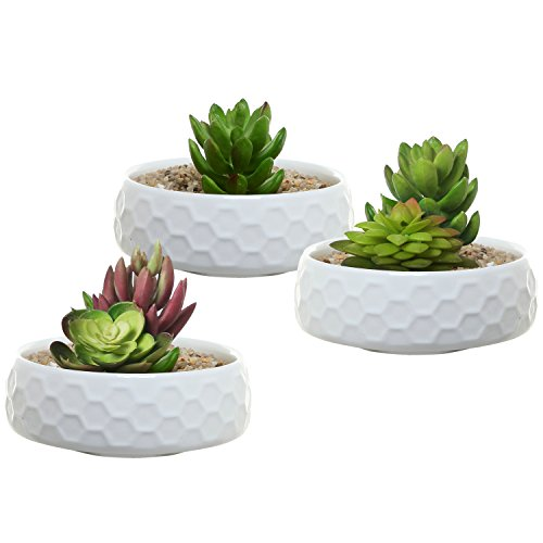 4 inch White Ceramic Shallow Succulent Planter Pots, Set of 3 Honeycomb Pattern Jewelry Dishes