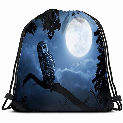 Quiet Night Bright Moon Rising Over Animals Wildlife Owl Holidays Drawstring Backpack Bag For Kids Boys Girls Teens Birthday, Gift String Bag Gym Cinch Sack For School And Party]()