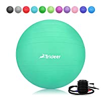 Exercise Ball, Yoga Ball, Birthing Ball with Quick Pump, Anti-Burst & Extra Thick, Heavy Duty Ball Chair 45cm 55cm 65cm 75cm 85cm Stability Ball Supports 2200lbs (Office&Home)