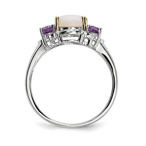 ICE CARATS 925 Sterling Silver 14k Opal Purple Amethyst Band Ring Size 6.00 Stone Gemstone Fine Jewelry Gift Set For Women Heart by ICE CARATS (Image #5)
