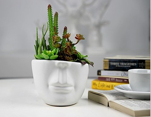 Amazon.com: YOURNELO Creative Half Head Ceramic Flower Plant Pots Succulent  Planters Vase: Garden U0026 Outdoor