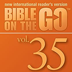 Bible on the Go, Vol. 35: Baptism, Temptation, Disciples, and Miracles of Jesus (Matthew 3-4; Mark 1-2; John 1, 3; Luke 5-6)