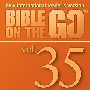 Bible on the Go, Vol. 35: Baptism, Temptation, Disciples, and Miracles of Jesus (Matthew 3-4; Mark 1-2; John 1, 3; Luke 5-6) Audiobook