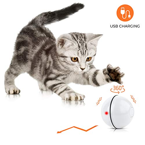 Interactive Cat Toy Ball – 360 Degree Self Rotating Ball, USB Rechargeable Kitten Toys, Build-in Spinning Led Light…