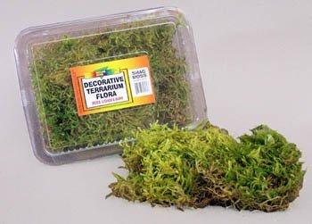 Nature Zone Shag Moss by Nature Zone