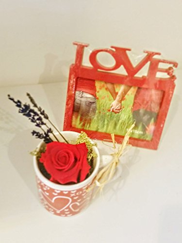 RED ETERNAL ROSE IN CERAMIC MUG AND FRAME FOR PHOTOGRAPHY LOVE