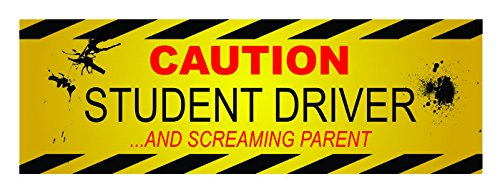 20038 MagnaCard Magnetic Bumper Sticker Caution Student Driver and Screaming Parent 12 x 3 x 0.1 inches Cling It Ups