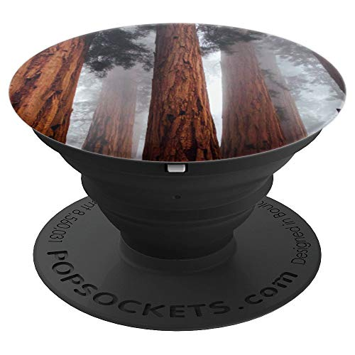 Fog in the Trees Redwood Tree Trunk Foggy Weather - PopSockets Grip and Stand for Phones and Tablets