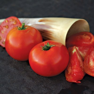 davids-garden-seeds-tomato-slicing-siletz-dtm867-red-25-organic-seeds