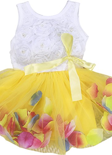 Kids Girls Princess Rose Garden Flower Petal Lace Ruffled Tulle Skirts Dresses Yellow 4T Round Yoke Dress