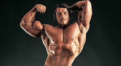 MAHALAXMI ART Arnold Schwarzenegger Bodybuilding Poster HD Wallpaper Multicolour