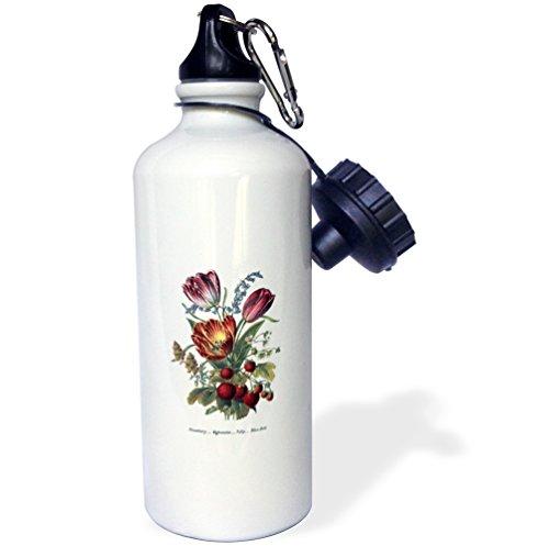 3dRose BLN Vintage Flower Collection - Vintage Flowers Strawberry Mignonette Tulip Blue Bells - 21 oz Sports Water Bottle - Tulip Bell Flower