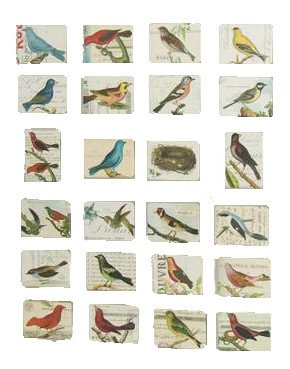 MISWEE 24-pcs magnetic fridge magnets refrigerator sticker home decoration accessories magnet paste arts crafts (birds)