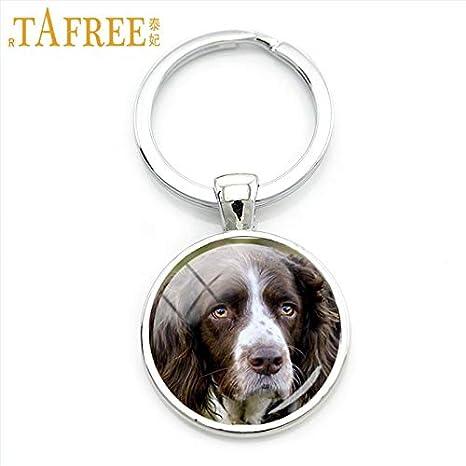 Amazon.com: Mct12-1 Cadenas para llaves de perro ágil ...