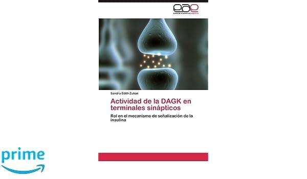 Actividad de la DAGK en terminales sinápticos: Rol en el ...