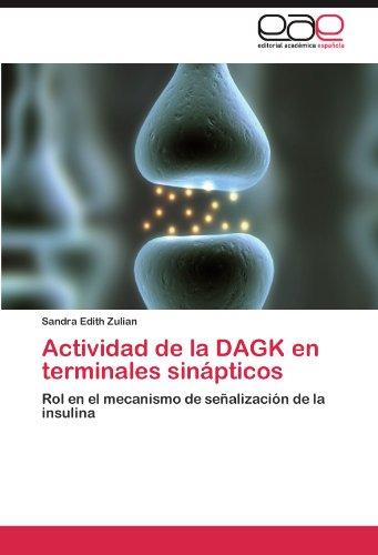 Descargar Libro Actividad De La Dagk En Terminales Sinapticos Sandra Edith Zulian