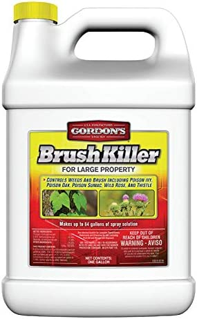 Gordon's Brush Killer For Large Property