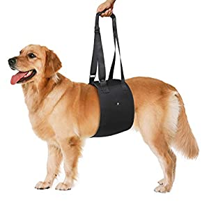 Petetpet Adjustable Dog Lift Support Harness with Adjustable Strap Help Dogs Weak Front or Rear Hind Legs, Injury… Click on image for further info.