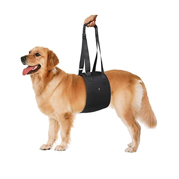 Adjustable-Dog-Lift-Support-Harness