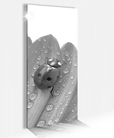 Amazonde Acrylglasbild 40x100cm Blume Margerite Blumen Marienkäfer