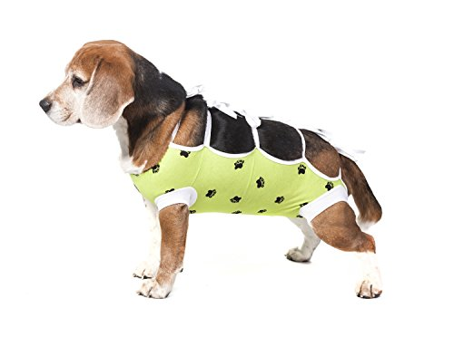 E-Collar Alternative for Cats and Dogs Designed to Protect Abdominal Wounds and Skin Disease. Award Winning and Patented Design Recommended by Veterinarians Worldwide. (Small, Lime Green)