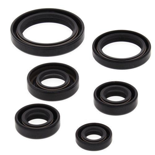 Winderosa 822241 Engine Oil Seal Kit
