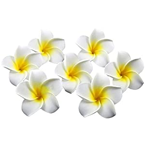 Healthcom Premium Hawaiian Foam Flower White Artificial Plumeria Rubra For Beach,Wedding Party Decoration,Package of 100 6