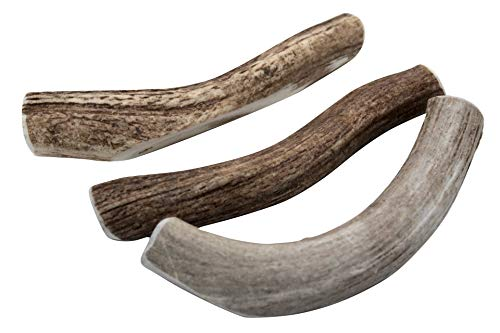 Large Antler Dog Chews, 2-pac is Now a 3-Pack 6-8 in. long,Premium Healthy antlers for Dogs Treats, by Deer Valley Dog Chews