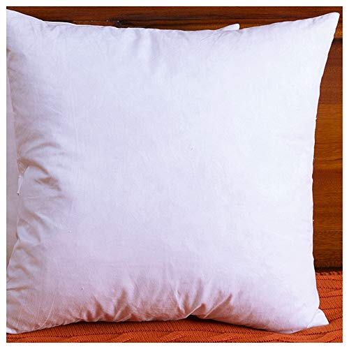 DOWNIGHT Cotton Fabric Throw Pillow Inserts, Down and Feather Decorative Pillow Insert, 28X28 Inches, Only Single Pillow Insert ()