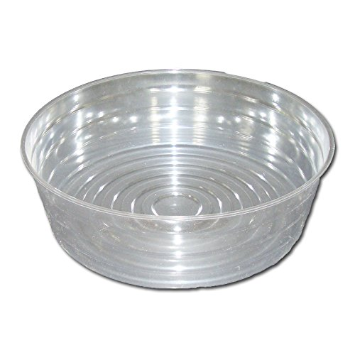 - Six Pack of Deep Crystal Clear Plastic Saucers - 12 Inch