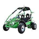 4 cylinder crate engine - GoPowerSports TrailMaster Mid XRX (green)
