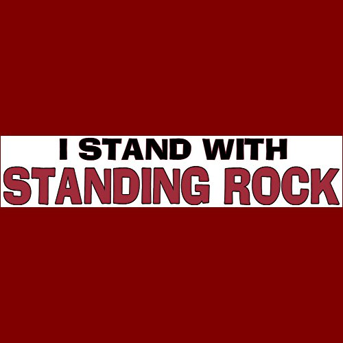 I STAND WITH STANDING ROCK Bumper Sticker BUY 2 GET 1 -