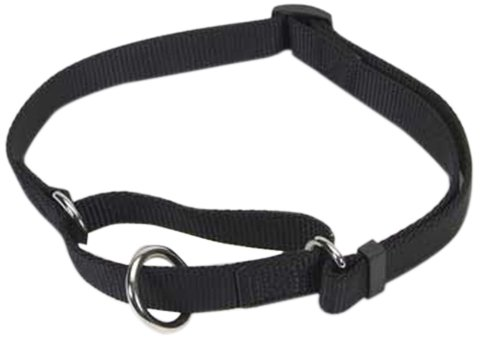 No Slip Limited Closure Collar, Black, 14 to 20-Inch, My Pet Supplies