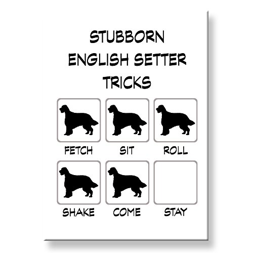 English Setter Stubborn Tricks Fridge Magnet Funny English Setter Magnet