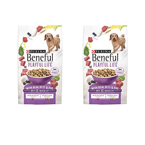 Beneful Playful Life Dry Dog Food with Beef & Egg (M)