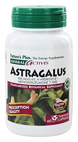 Astragalus Extract 450mg Natures Plus product image