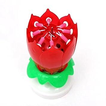 Velas con música con diseño de una flor de loto.: Amazon.es ...