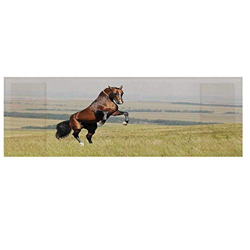 Horses Microwave Oven Cover,Bay Akhal Teke Horse Stallion Rearing on The Field Noble Mammal Outdoors Pastoral Cover for Kitchen,36