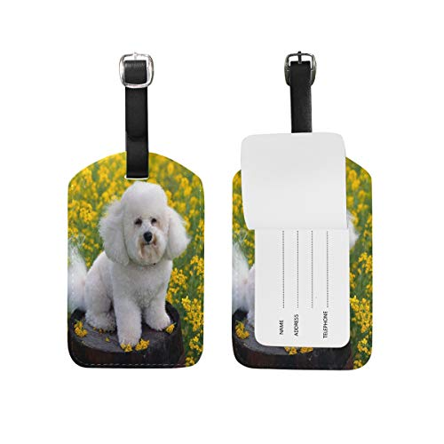 FunnyCustom Luggage Tags Cute Puppy Bichon Frise Dogs Travel ID Identifier (Bichon Tag Luggage Frise Leather)