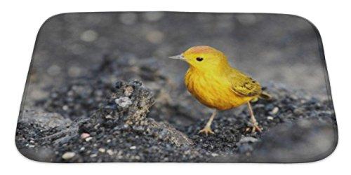 Warbler Plush Bird - 8