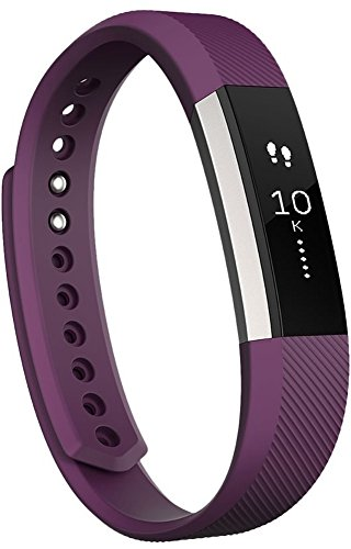 Fitbit Alta Fitness Tracker Silver Plum Small (Large Image)