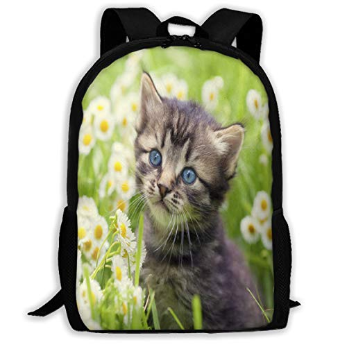Backpack Greater Lafayette Cat Great for Girl Holiday (Outdoor Lafayette Hanging)