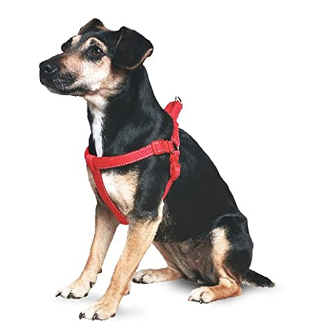 Ancol Padded Nylon Dog Harness Red L 67-87cm